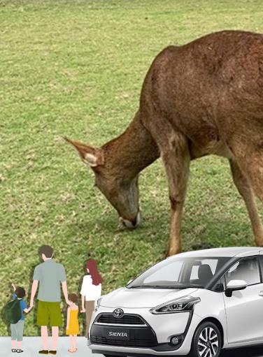 宜起來尋鹿~~~~~