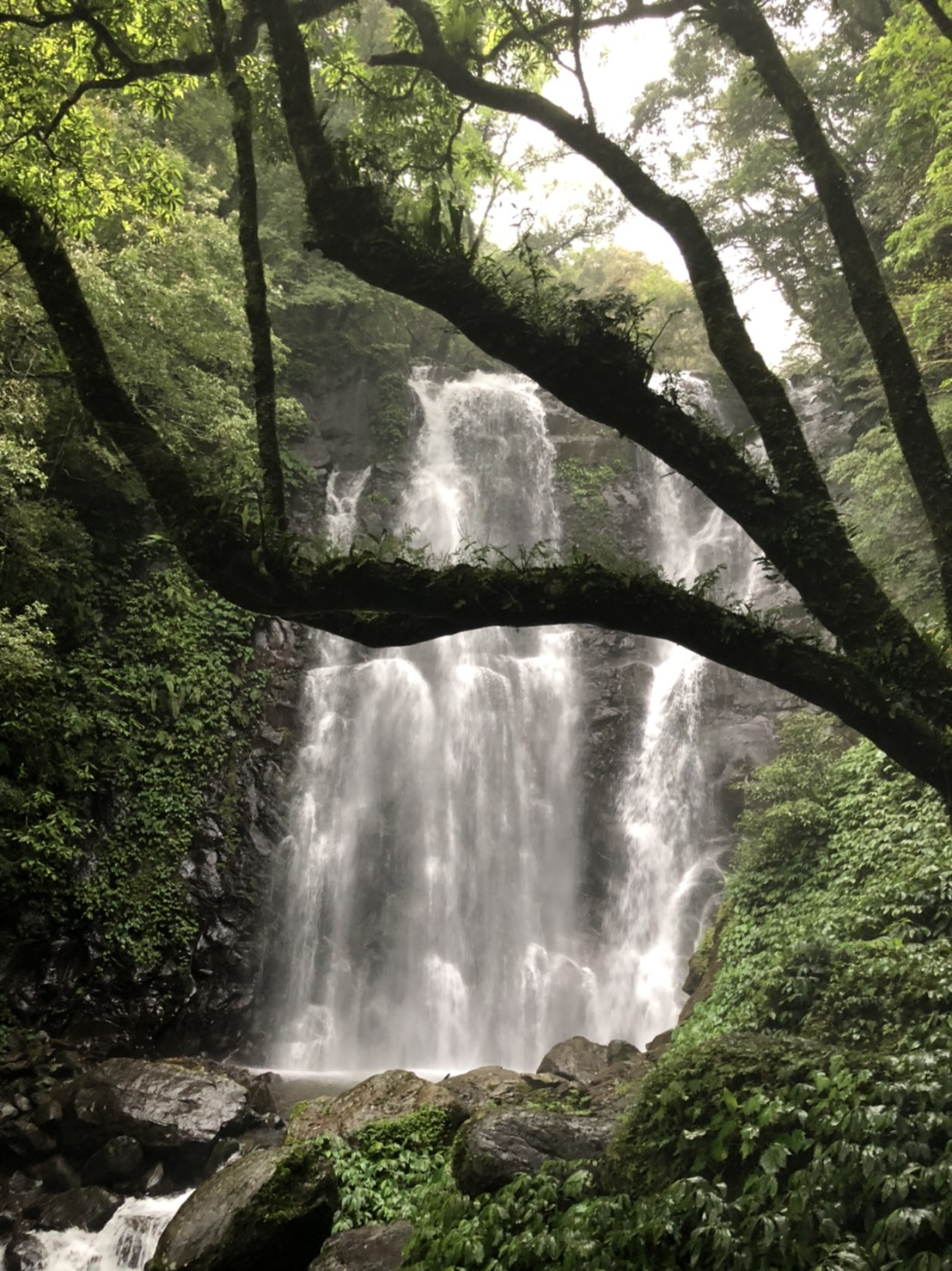 【疫期走出去第二彈!滿月圓 · 三峽】沐浴瀑布仙境森林浴,來去當一天仙女吧!